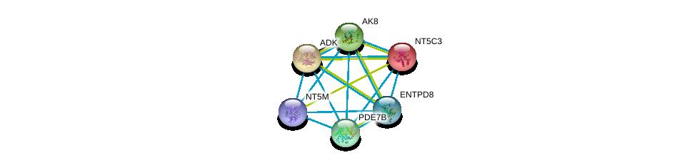 http://string-db.org/version_10/api/image/networkList?limit=0&targetmode=proteins&caller_identity=gene_cards&network_flavor=evidence&identifiers=9606.ENSP00000310661%0d%0a9606.ENSP00000286621%0d%0a9606.ENSP00000360561%0d%0a9606.ENSP00000242210%0d%0a9606.ENSP00000298545%0d%0a9606.ENSP00000373674%0d%0a