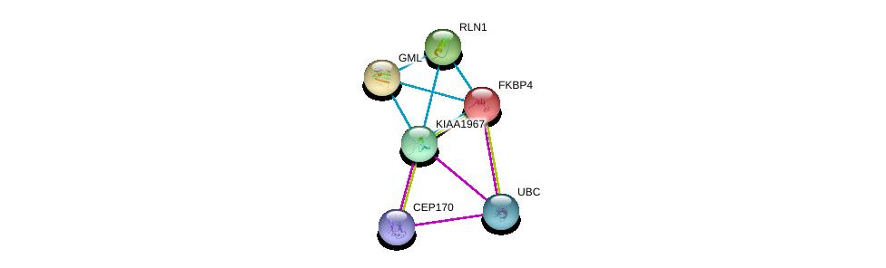http://string-db.org/version_10/api/image/networkList?limit=0&targetmode=proteins&caller_identity=gene_cards&network_flavor=evidence&identifiers=9606.ENSP00000310670%0d%0a9606.ENSP00000355500%0d%0a9606.ENSP00000344818%0d%0a9606.ENSP00000001008%0d%0a9606.ENSP00000220940%0d%0a9606.ENSP00000223862%0d%0a