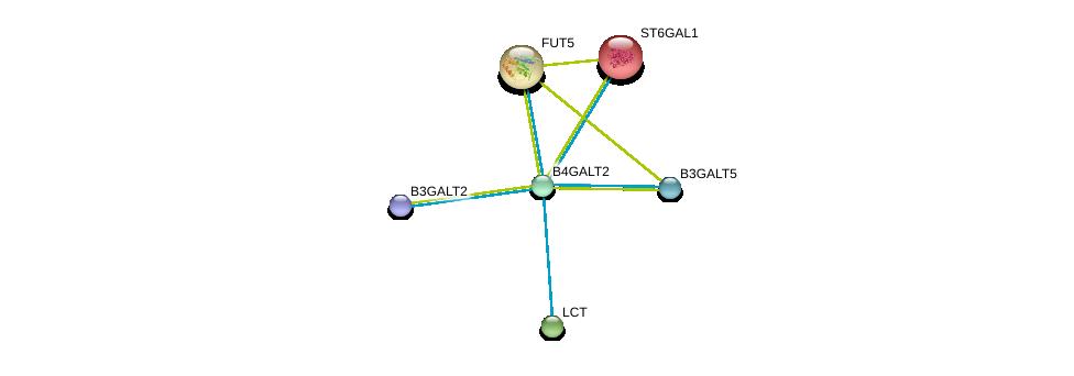 http://string-db.org/version_10/api/image/networkList?limit=0&targetmode=proteins&caller_identity=gene_cards&network_flavor=evidence&identifiers=9606.ENSP00000310696%0d%0a9606.ENSP00000343318%0d%0a9606.ENSP00000356404%0d%0a9606.ENSP00000169298%0d%0a9606.ENSP00000252675%0d%0a9606.ENSP00000264162%0d%0a