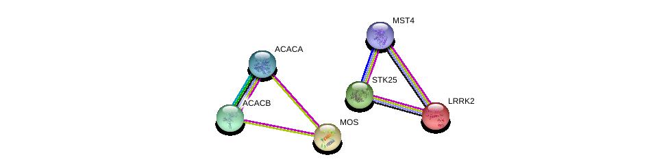 http://string-db.org/version_10/api/image/networkList?limit=0&targetmode=proteins&caller_identity=gene_cards&network_flavor=evidence&identifiers=9606.ENSP00000310722%0d%0a9606.ENSP00000377867%0d%0a9606.ENSP00000341044%0d%0a9606.ENSP00000344789%0d%0a9606.ENSP00000325748%0d%0a9606.ENSP00000298910%0d%0a