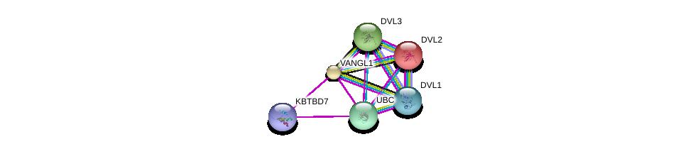 http://string-db.org/version_10/api/image/networkList?limit=0&targetmode=proteins&caller_identity=gene_cards&network_flavor=evidence&identifiers=9606.ENSP00000310800%0d%0a9606.ENSP00000344818%0d%0a9606.ENSP00000316054%0d%0a9606.ENSP00000005340%0d%0a9606.ENSP00000368169%0d%0a9606.ENSP00000368797%0d%0a