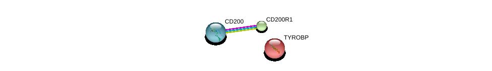 http://string-db.org/version_10/api/image/networkList?limit=0&targetmode=proteins&caller_identity=gene_cards&network_flavor=evidence&identifiers=9606.ENSP00000311035%0d%0a9606.ENSP00000420298%0d%0a9606.ENSP00000262629%0d%0a