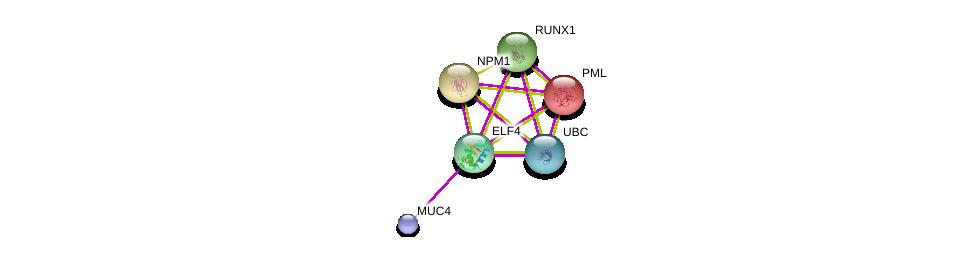 http://string-db.org/version_10/api/image/networkList?limit=0&targetmode=proteins&caller_identity=gene_cards&network_flavor=evidence&identifiers=9606.ENSP00000311280%0d%0a9606.ENSP00000300305%0d%0a9606.ENSP00000344818%0d%0a9606.ENSP00000417498%0d%0a9606.ENSP00000296930%0d%0a9606.ENSP00000268058%0d%0a
