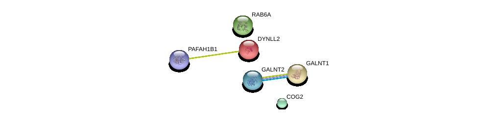 http://string-db.org/version_10/api/image/networkList?limit=0&targetmode=proteins&caller_identity=gene_cards&network_flavor=evidence&identifiers=9606.ENSP00000311449%0d%0a9606.ENSP00000269195%0d%0a9606.ENSP00000355629%0d%0a9606.ENSP00000240343%0d%0a9606.ENSP00000380378%0d%0a9606.ENSP00000355632%0d%0a
