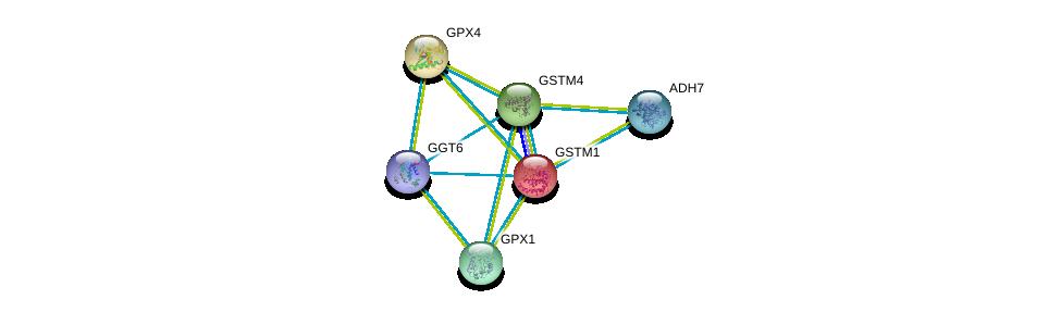http://string-db.org/version_10/api/image/networkList?limit=0&targetmode=proteins&caller_identity=gene_cards&network_flavor=evidence&identifiers=9606.ENSP00000311469%0d%0a9606.ENSP00000458307%0d%0a9606.ENSP00000358851%0d%0a9606.ENSP00000346103%0d%0a9606.ENSP00000407375%0d%0a9606.ENSP00000420269%0d%0a
