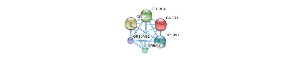 http://string-db.org/version_10/api/image/networkList?limit=0&targetmode=proteins&caller_identity=gene_cards&network_flavor=evidence&identifiers=9606.ENSP00000311477%0d%0a9606.ENSP00000248572%0d%0a9606.ENSP00000259357%0d%0a9606.ENSP00000277216%0d%0a9606.ENSP00000302057%0d%0a9606.ENSP00000302199%0d%0a