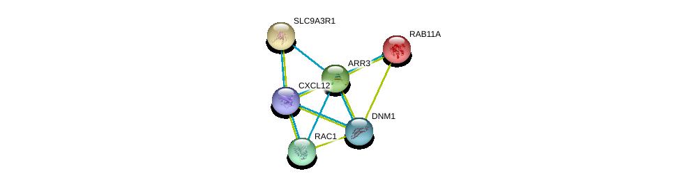 http://string-db.org/version_10/api/image/networkList?limit=0&targetmode=proteins&caller_identity=gene_cards&network_flavor=evidence&identifiers=9606.ENSP00000311538%0d%0a9606.ENSP00000261890%0d%0a9606.ENSP00000262613%0d%0a9606.ENSP00000379140%0d%0a9606.ENSP00000348461%0d%0a9606.ENSP00000362014%0d%0a