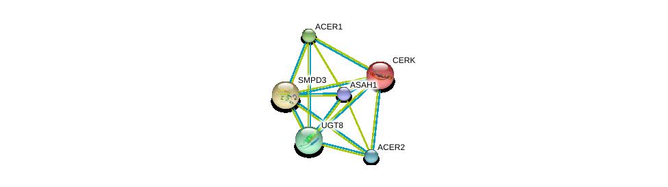 http://string-db.org/version_10/api/image/networkList?limit=0&targetmode=proteins&caller_identity=gene_cards&network_flavor=evidence&identifiers=9606.ENSP00000311648%0d%0a9606.ENSP00000301452%0d%0a9606.ENSP00000342609%0d%0a9606.ENSP00000371152%0d%0a9606.ENSP00000216264%0d%0a9606.ENSP00000219334%0d%0a