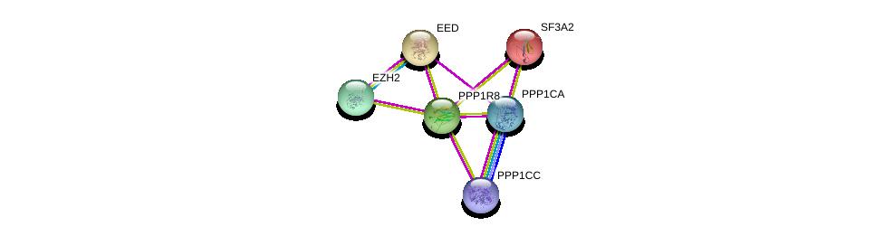 http://string-db.org/version_10/api/image/networkList?limit=0&targetmode=proteins&caller_identity=gene_cards&network_flavor=evidence&identifiers=9606.ENSP00000311677%0d%0a9606.ENSP00000326031%0d%0a9606.ENSP00000335084%0d%0a9606.ENSP00000221494%0d%0a9606.ENSP00000320147%0d%0a9606.ENSP00000263360%0d%0a