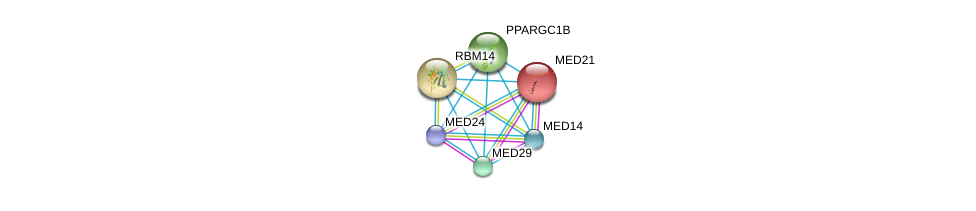 http://string-db.org/version_10/api/image/networkList?limit=0&targetmode=proteins&caller_identity=gene_cards&network_flavor=evidence&identifiers=9606.ENSP00000311747%0d%0a9606.ENSP00000312649%0d%0a9606.ENSP00000282892%0d%0a9606.ENSP00000323720%0d%0a9606.ENSP00000377686%0d%0a9606.ENSP00000314343%0d%0a