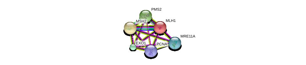 http://string-db.org/version_10/api/image/networkList?limit=0&targetmode=proteins&caller_identity=gene_cards&network_flavor=evidence&identifiers=9606.ENSP00000311873%0d%0a9606.ENSP00000233146%0d%0a9606.ENSP00000231790%0d%0a9606.ENSP00000265849%0d%0a9606.ENSP00000325863%0d%0a9606.ENSP00000368438%0d%0a