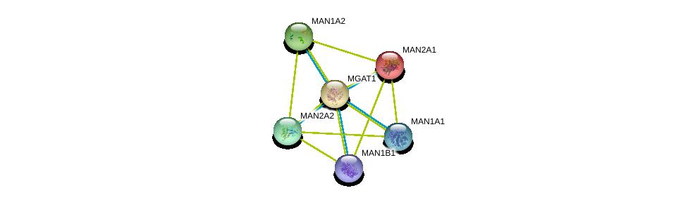 http://string-db.org/version_10/api/image/networkList?limit=0&targetmode=proteins&caller_identity=gene_cards&network_flavor=evidence&identifiers=9606.ENSP00000311888%0d%0a9606.ENSP00000261483%0d%0a9606.ENSP00000348959%0d%0a9606.ENSP00000353655%0d%0a9606.ENSP00000357453%0d%0a9606.ENSP00000360645%0d%0a