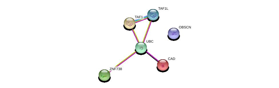 http://string-db.org/version_10/api/image/networkList?limit=0&targetmode=proteins&caller_identity=gene_cards&network_flavor=evidence&identifiers=9606.ENSP00000311957%0d%0a9606.ENSP00000344818%0d%0a9606.ENSP00000264705%0d%0a9606.ENSP00000455507%0d%0a9606.ENSP00000276072%0d%0a9606.ENSP00000418379%0d%0a