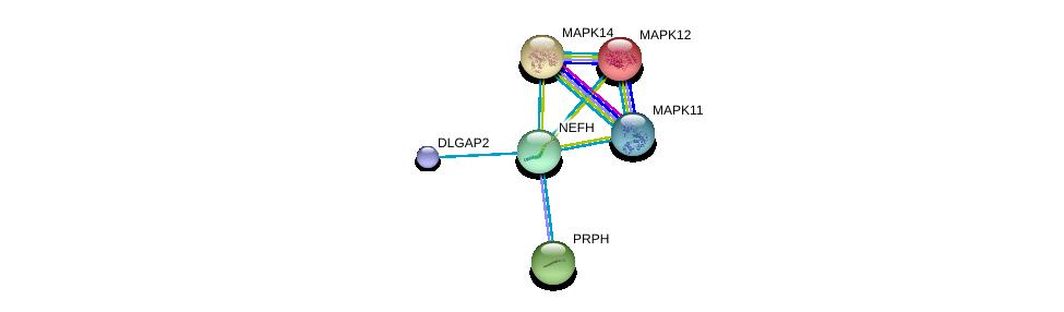 http://string-db.org/version_10/api/image/networkList?limit=0&targetmode=proteins&caller_identity=gene_cards&network_flavor=evidence&identifiers=9606.ENSP00000311997%0d%0a9606.ENSP00000400258%0d%0a9606.ENSP00000333685%0d%0a9606.ENSP00000257860%0d%0a9606.ENSP00000229794%0d%0a9606.ENSP00000215659%0d%0a