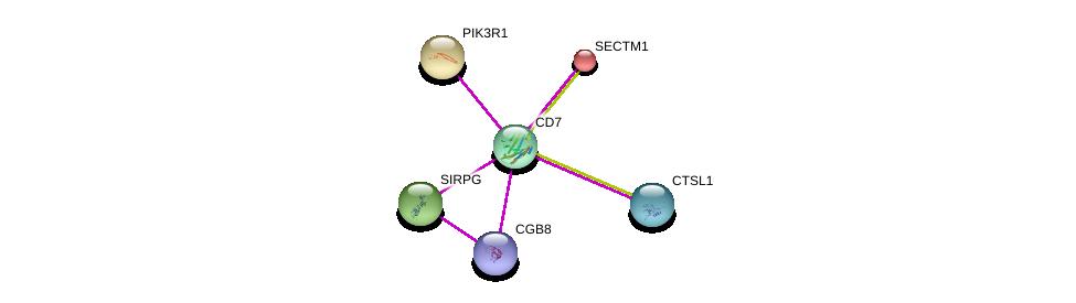 http://string-db.org/version_10/api/image/networkList?limit=0&targetmode=proteins&caller_identity=gene_cards&network_flavor=evidence&identifiers=9606.ENSP00000312027%0d%0a9606.ENSP00000403649%0d%0a9606.ENSP00000274335%0d%0a9606.ENSP00000269389%0d%0a9606.ENSP00000305529%0d%0a9606.ENSP00000345344%0d%0a