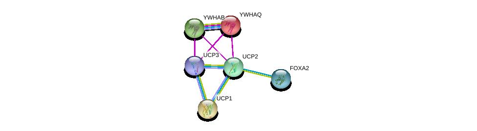 http://string-db.org/version_10/api/image/networkList?limit=0&targetmode=proteins&caller_identity=gene_cards&network_flavor=evidence&identifiers=9606.ENSP00000312029%0d%0a9606.ENSP00000262999%0d%0a9606.ENSP00000315955%0d%0a9606.ENSP00000323740%0d%0a9606.ENSP00000238081%0d%0a9606.ENSP00000300161%0d%0a