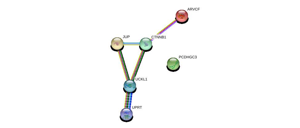 http://string-db.org/version_10/api/image/networkList?limit=0&targetmode=proteins&caller_identity=gene_cards&network_flavor=evidence&identifiers=9606.ENSP00000312070%0d%0a9606.ENSP00000346155%0d%0a9606.ENSP00000344456%0d%0a9606.ENSP00000311113%0d%0a9606.ENSP00000362481%0d%0a9606.ENSP00000263207%0d%0a