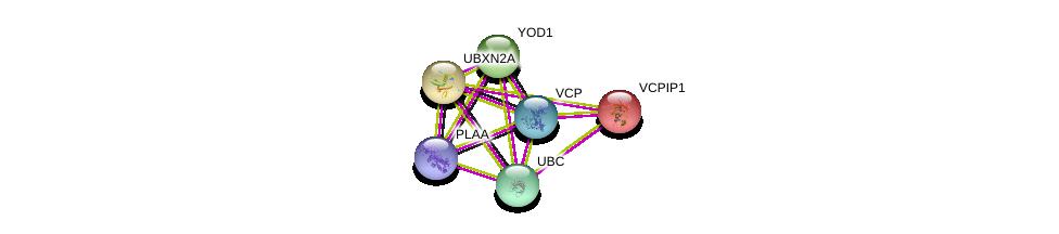 http://string-db.org/version_10/api/image/networkList?limit=0&targetmode=proteins&caller_identity=gene_cards&network_flavor=evidence&identifiers=9606.ENSP00000312107%0d%0a9606.ENSP00000351777%0d%0a9606.ENSP00000344818%0d%0a9606.ENSP00000309031%0d%0a9606.ENSP00000380460%0d%0a9606.ENSP00000326813%0d%0a