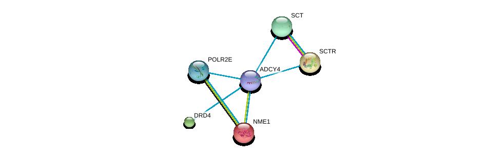 http://string-db.org/version_10/api/image/networkList?limit=0&targetmode=proteins&caller_identity=gene_cards&network_flavor=evidence&identifiers=9606.ENSP00000312126%0d%0a9606.ENSP00000013034%0d%0a9606.ENSP00000019103%0d%0a9606.ENSP00000176183%0d%0a9606.ENSP00000176195%0d%0a9606.ENSP00000215587%0d%0a