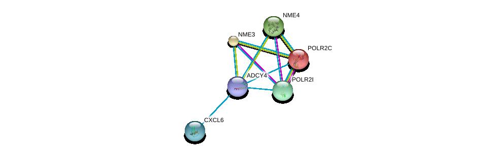 http://string-db.org/version_10/api/image/networkList?limit=0&targetmode=proteins&caller_identity=gene_cards&network_flavor=evidence&identifiers=9606.ENSP00000312126%0d%0a9606.ENSP00000221859%0d%0a9606.ENSP00000226317%0d%0a9606.ENSP00000219479%0d%0a9606.ENSP00000219302%0d%0a9606.ENSP00000219252%0d%0a