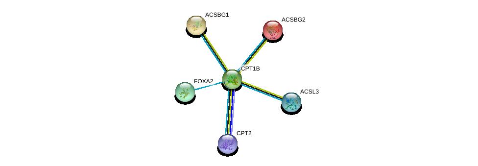 http://string-db.org/version_10/api/image/networkList?limit=0&targetmode=proteins&caller_identity=gene_cards&network_flavor=evidence&identifiers=9606.ENSP00000312189%0d%0a9606.ENSP00000360541%0d%0a9606.ENSP00000315955%0d%0a9606.ENSP00000252669%0d%0a9606.ENSP00000350012%0d%0a9606.ENSP00000258873%0d%0a