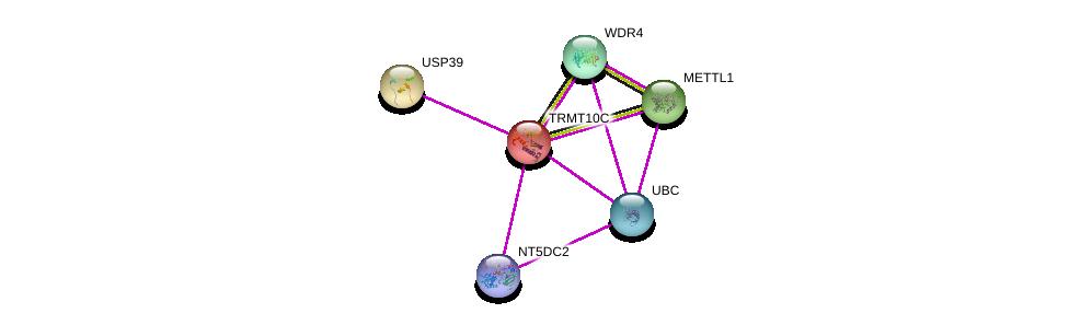 http://string-db.org/version_10/api/image/networkList?limit=0&targetmode=proteins&caller_identity=gene_cards&network_flavor=evidence&identifiers=9606.ENSP00000312356%0d%0a9606.ENSP00000312981%0d%0a9606.ENSP00000314441%0d%0a9606.ENSP00000344818%0d%0a9606.ENSP00000328671%0d%0a9606.ENSP00000406933%0d%0a