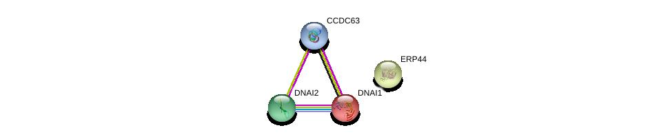 http://string-db.org/version_10/api/image/networkList?limit=0&targetmode=proteins&caller_identity=gene_cards&network_flavor=evidence&identifiers=9606.ENSP00000312399%0d%0a9606.ENSP00000242317%0d%0a9606.ENSP00000308312%0d%0a9606.ENSP00000262455%0d%0a