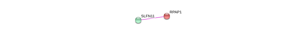 http://string-db.org/version_10/api/image/networkList?limit=0&targetmode=proteins&caller_identity=gene_cards&network_flavor=evidence&identifiers=9606.ENSP00000312402%0d%0a9606.ENSP00000306123%0d%0a