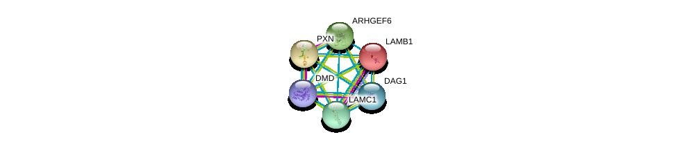 http://string-db.org/version_10/api/image/networkList?limit=0&targetmode=proteins&caller_identity=gene_cards&network_flavor=evidence&identifiers=9606.ENSP00000312435%0d%0a9606.ENSP00000354923%0d%0a9606.ENSP00000222399%0d%0a9606.ENSP00000228307%0d%0a9606.ENSP00000250617%0d%0a9606.ENSP00000258341%0d%0a