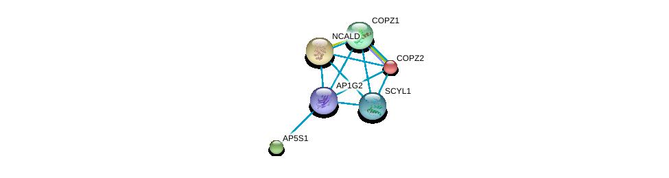 http://string-db.org/version_10/api/image/networkList?limit=0&targetmode=proteins&caller_identity=gene_cards&network_flavor=evidence&identifiers=9606.ENSP00000312442%0d%0a9606.ENSP00000006101%0d%0a9606.ENSP00000220931%0d%0a9606.ENSP00000246041%0d%0a9606.ENSP00000262061%0d%0a9606.ENSP00000270176%0d%0a