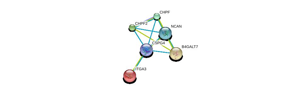 http://string-db.org/version_10/api/image/networkList?limit=0&targetmode=proteins&caller_identity=gene_cards&network_flavor=evidence&identifiers=9606.ENSP00000312506%0d%0a9606.ENSP00000007722%0d%0a9606.ENSP00000029410%0d%0a9606.ENSP00000035307%0d%0a9606.ENSP00000243776%0d%0a9606.ENSP00000252575%0d%0a