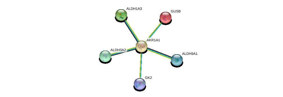 http://string-db.org/version_10/api/image/networkList?limit=0&targetmode=proteins&caller_identity=gene_cards&network_flavor=evidence&identifiers=9606.ENSP00000312606%0d%0a9606.ENSP00000302728%0d%0a9606.ENSP00000332256%0d%0a9606.ENSP00000345774%0d%0a9606.ENSP00000346827%0d%0a9606.ENSP00000351706%0d%0a