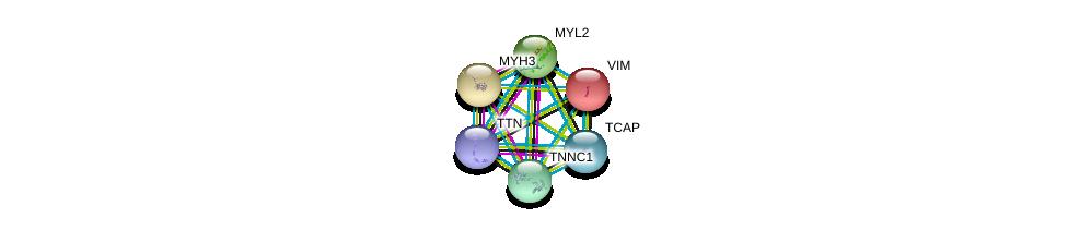 http://string-db.org/version_10/api/image/networkList?limit=0&targetmode=proteins&caller_identity=gene_cards&network_flavor=evidence&identifiers=9606.ENSP00000312624%0d%0a9606.ENSP00000343764%0d%0a9606.ENSP00000224237%0d%0a9606.ENSP00000226209%0d%0a9606.ENSP00000228841%0d%0a9606.ENSP00000232975%0d%0a