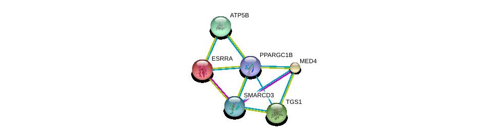 http://string-db.org/version_10/api/image/networkList?limit=0&targetmode=proteins&caller_identity=gene_cards&network_flavor=evidence&identifiers=9606.ENSP00000312649%0d%0a9606.ENSP00000000442%0d%0a9606.ENSP00000258648%0d%0a9606.ENSP00000260129%0d%0a9606.ENSP00000262030%0d%0a9606.ENSP00000262188%0d%0a