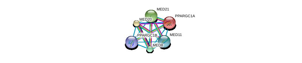 http://string-db.org/version_10/api/image/networkList?limit=0&targetmode=proteins&caller_identity=gene_cards&network_flavor=evidence&identifiers=9606.ENSP00000312649%0d%0a9606.ENSP00000264867%0d%0a9606.ENSP00000265350%0d%0a9606.ENSP00000282892%0d%0a9606.ENSP00000290663%0d%0a9606.ENSP00000293777%0d%0a