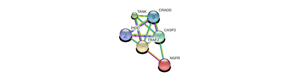 http://string-db.org/version_10/api/image/networkList?limit=0&targetmode=proteins&caller_identity=gene_cards&network_flavor=evidence&identifiers=9606.ENSP00000312664%0d%0a9606.ENSP00000327647%0d%0a9606.ENSP00000337797%0d%0a9606.ENSP00000172229%0d%0a9606.ENSP00000247668%0d%0a9606.ENSP00000259075%0d%0a
