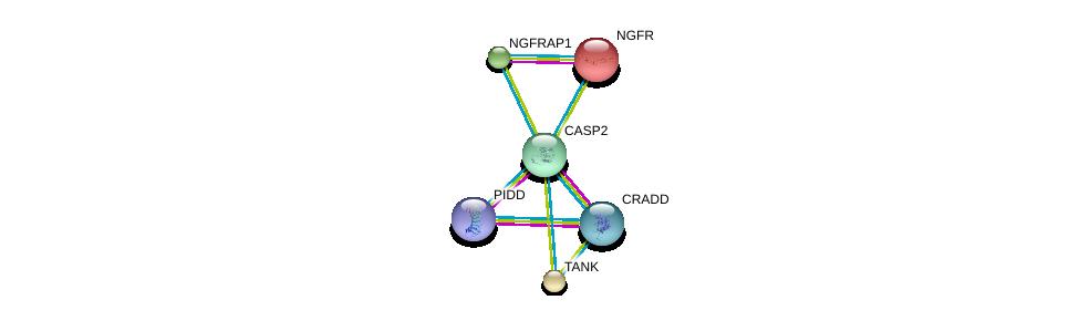 http://string-db.org/version_10/api/image/networkList?limit=0&targetmode=proteins&caller_identity=gene_cards&network_flavor=evidence&identifiers=9606.ENSP00000312664%0d%0a9606.ENSP00000327647%0d%0a9606.ENSP00000337797%0d%0a9606.ENSP00000299872%0d%0a9606.ENSP00000259075%0d%0a9606.ENSP00000172229%0d%0a