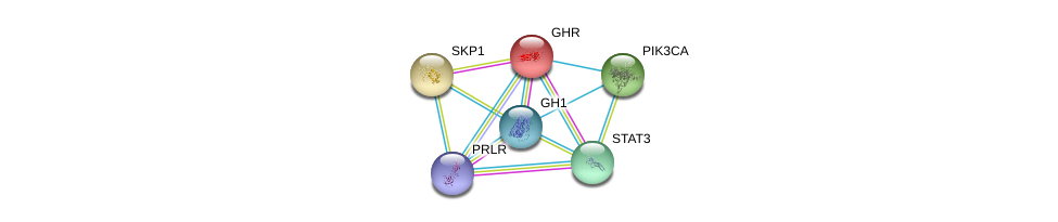 http://string-db.org/version_10/api/image/networkList?limit=0&targetmode=proteins&caller_identity=gene_cards&network_flavor=evidence&identifiers=9606.ENSP00000312673%0d%0a9606.ENSP00000230882%0d%0a9606.ENSP00000371432%0d%0a9606.ENSP00000231487%0d%0a9606.ENSP00000263967%0d%0a9606.ENSP00000264657%0d%0a