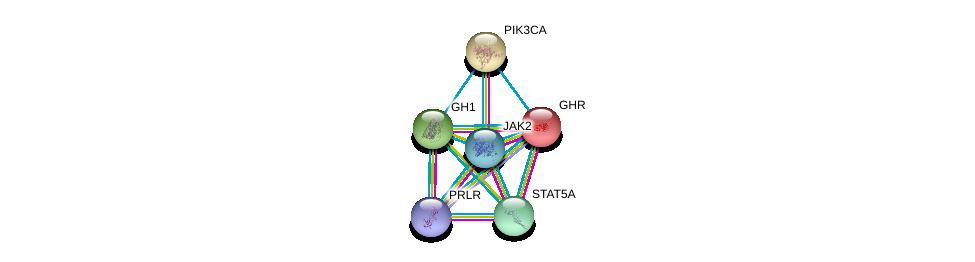 http://string-db.org/version_10/api/image/networkList?limit=0&targetmode=proteins&caller_identity=gene_cards&network_flavor=evidence&identifiers=9606.ENSP00000312673%0d%0a9606.ENSP00000230882%0d%0a9606.ENSP00000371432%0d%0a9606.ENSP00000341208%0d%0a9606.ENSP00000371067%0d%0a9606.ENSP00000263967%0d%0a