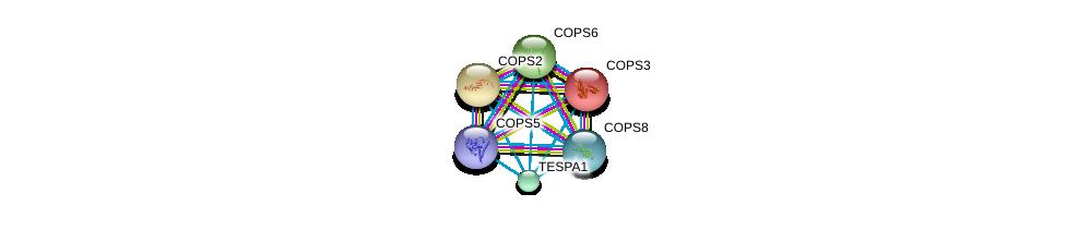http://string-db.org/version_10/api/image/networkList?limit=0&targetmode=proteins&caller_identity=gene_cards&network_flavor=evidence&identifiers=9606.ENSP00000312679%0d%0a9606.ENSP00000346340%0d%0a9606.ENSP00000268717%0d%0a9606.ENSP00000350512%0d%0a9606.ENSP00000304102%0d%0a9606.ENSP00000299259%0d%0a