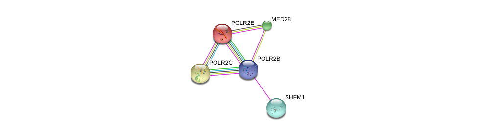 http://string-db.org/version_10/api/image/networkList?limit=0&targetmode=proteins&caller_identity=gene_cards&network_flavor=evidence&identifiers=9606.ENSP00000312735%0d%0a9606.ENSP00000237380%0d%0a9606.ENSP00000248566%0d%0a9606.ENSP00000248566%0d%0a9606.ENSP00000219252%0d%0a9606.ENSP00000215587%0d%0a