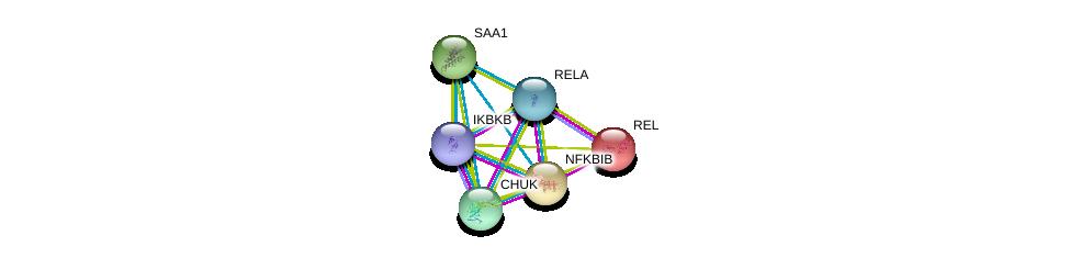 http://string-db.org/version_10/api/image/networkList?limit=0&targetmode=proteins&caller_identity=gene_cards&network_flavor=evidence&identifiers=9606.ENSP00000312988%0d%0a9606.ENSP00000384273%0d%0a9606.ENSP00000359424%0d%0a9606.ENSP00000295025%0d%0a9606.ENSP00000430684%0d%0a9606.ENSP00000348918%0d%0a