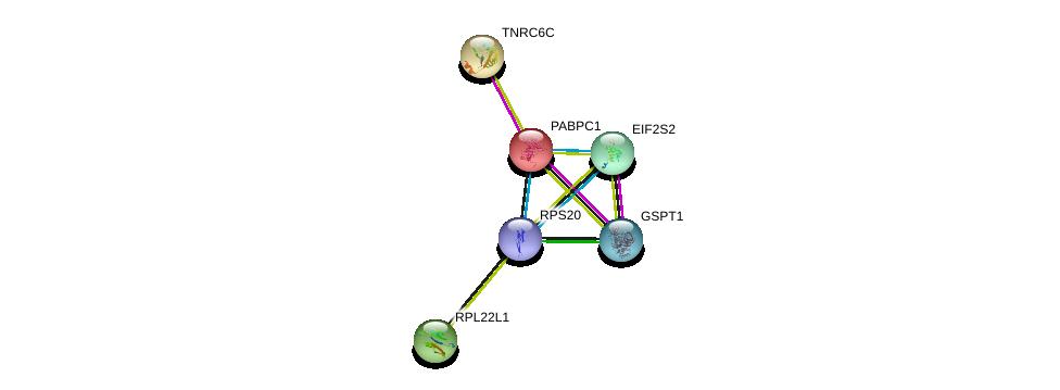 http://string-db.org/version_10/api/image/networkList?limit=0&targetmode=proteins&caller_identity=gene_cards&network_flavor=evidence&identifiers=9606.ENSP00000313007%0d%0a9606.ENSP00000336783%0d%0a9606.ENSP00000398131%0d%0a9606.ENSP00000364119%0d%0a9606.ENSP00000346080%0d%0a9606.ENSP00000429374%0d%0a