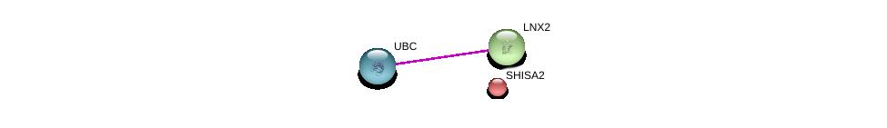 http://string-db.org/version_10/api/image/networkList?limit=0&targetmode=proteins&caller_identity=gene_cards&network_flavor=evidence&identifiers=9606.ENSP00000313079%0d%0a9606.ENSP00000325929%0d%0a9606.ENSP00000344818%0d%0a