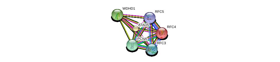 http://string-db.org/version_10/api/image/networkList?limit=0&targetmode=proteins&caller_identity=gene_cards&network_flavor=evidence&identifiers=9606.ENSP00000313171%0d%0a9606.ENSP00000296273%0d%0a9606.ENSP00000368438%0d%0a9606.ENSP00000408295%0d%0a9606.ENSP00000369411%0d%0a9606.ENSP00000353793%0d%0a