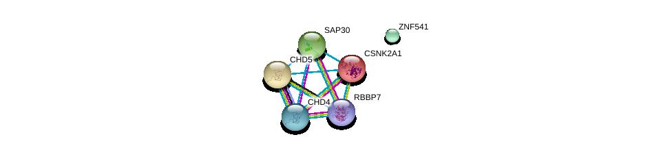 http://string-db.org/version_10/api/image/networkList?limit=0&targetmode=proteins&caller_identity=gene_cards&network_flavor=evidence&identifiers=9606.ENSP00000313258%0d%0a9606.ENSP00000217244%0d%0a9606.ENSP00000262450%0d%0a9606.ENSP00000349508%0d%0a9606.ENSP00000296504%0d%0a9606.ENSP00000369424%0d%0a