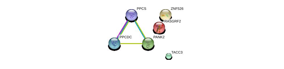 http://string-db.org/version_10/api/image/networkList?limit=0&targetmode=proteins&caller_identity=gene_cards&network_flavor=evidence&identifiers=9606.ENSP00000313377%0d%0a9606.ENSP00000361642%0d%0a9606.ENSP00000343190%0d%0a9606.ENSP00000326550%0d%0a9606.ENSP00000301215%0d%0a9606.ENSP00000265080%0d%0a