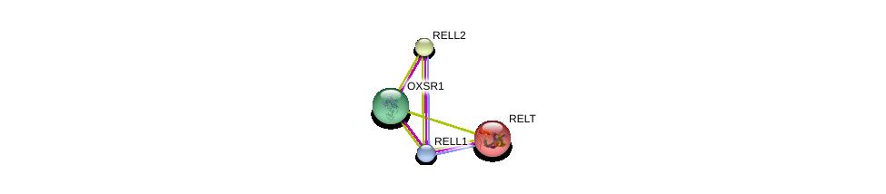 http://string-db.org/version_10/api/image/networkList?limit=0&targetmode=proteins&caller_identity=gene_cards&network_flavor=evidence&identifiers=9606.ENSP00000313385%0d%0a9606.ENSP00000297164%0d%0a9606.ENSP00000064780%0d%0a9606.ENSP00000311713%0d%0a