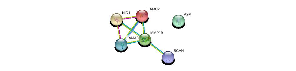 http://string-db.org/version_10/api/image/networkList?limit=0&targetmode=proteins&caller_identity=gene_cards&network_flavor=evidence&identifiers=9606.ENSP00000313437%0d%0a9606.ENSP00000323929%0d%0a9606.ENSP00000331210%0d%0a9606.ENSP00000264187%0d%0a9606.ENSP00000324532%0d%0a9606.ENSP00000264144%0d%0a