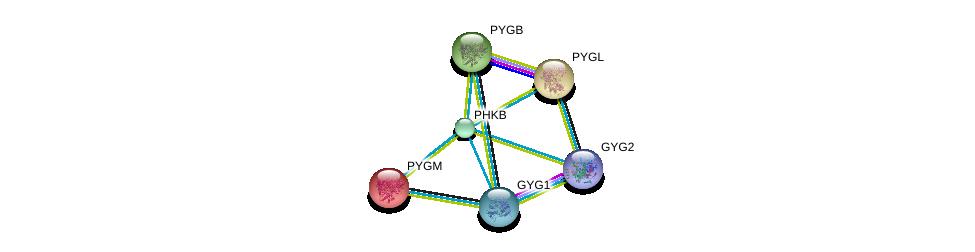 http://string-db.org/version_10/api/image/networkList?limit=0&targetmode=proteins&caller_identity=gene_cards&network_flavor=evidence&identifiers=9606.ENSP00000313504%0d%0a9606.ENSP00000370555%0d%0a9606.ENSP00000216392%0d%0a9606.ENSP00000164139%0d%0a9606.ENSP00000340736%0d%0a9606.ENSP00000216962%0d%0a